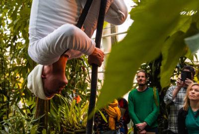 Mies valkoisissa vaatteissa roikkuu alaspäin mustan tangon päässä. Ympärillä on kasveja, paikkana on mahdollisesti kasvitieteellinen puutarha. Kuvassa on näkyvissä kuuden hengen yleisö, joka katsoo miehen esitystä. Yksi osallistujista valokuvaa esitystä kännykällään.